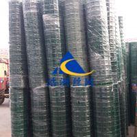 浩洲供应波浪型绿色护栏网/6*6孔大量备货圈地网多用荷兰网/散养鸡围栏