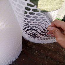 育雏鹅苗塑料平网 塑料养殖网 过滤粪便养鸡网