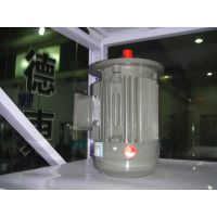 上海德东电机厂供应 (YE2-315L2-4 160KW)4极 三相异步电动机