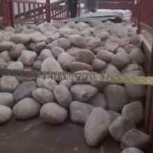 河北石家庄20-40厘米天然鹅卵石批发13832111494