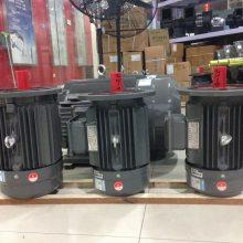 上海德东电机供应6极卧式(YE2-200L2-6 22KW)三相异步电机