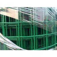 绿色涂塑圈玉米网+绿色涂塑圈玉米网厂家+绿色涂塑圈玉米网价格