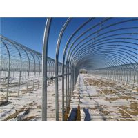 供应蘑菇棚 钢架大棚骨架生产制造厂13920286607