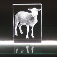绵羊水晶内雕纪念品定做,呼和浩特水晶内雕礼品定做,呼和浩特水晶内雕,呼和浩特水晶纪念品定做批发
