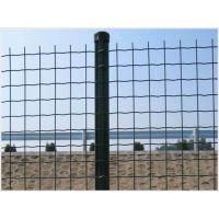 供应江夏区养鸡围栏网价格平米价鹤峰养羊急需1.5米铁丝网厂家供货