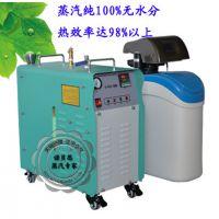 专业供应迷你型电加热蒸汽锅炉/数显便携式电加热蒸汽发生器