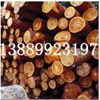 木托盘防霉剂厂家 新鲜木材防霉剂