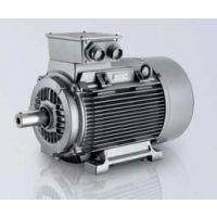 西门子进口高效电机1LE1
