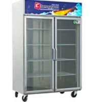 成云直销KC1.0L2-GAT两直玻璃门厨房柜保鲜柜