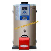 优质供应:燃气锅炉 燃气热水锅炉 生物质锅炉