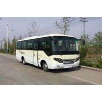 牡丹31座中巴车,31座客车,7.7米客车,MD6773KDS5
