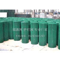 防护焊接网 优质浸塑绿色防护网 湖南荷兰网 五星生产厂家