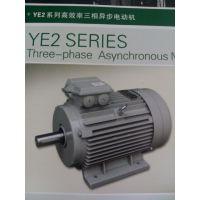 (YE2系列高效率三相异步电动机)德东电机厂