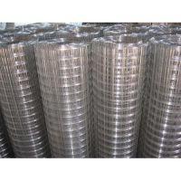 供应不锈钢筛网|不锈钢丝网|电焊网