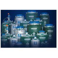 YDS-35 东亚液氮生物容器 东亚液氮罐 重量轻,液氮保存时间长