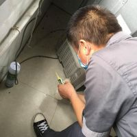 临沂市兰陵县专业灭蟑螂灭鼠捕鼠灭蚂蚁跳蚤臭虫杀虫公司