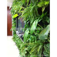 仿真植物墙垂直绿化墙面装饰 人造仿真花草 人造植物仿真叶子