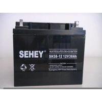 西力SEHEY蓄电池SH38-12/12V38AH价格表