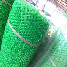 植物爬藤网 塑料平网报价 黑色塑料平网