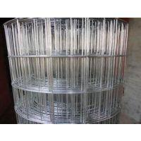 安平鑫勃源提供优质的电焊防护网、圈玉米网欢迎来电咨询