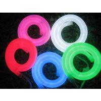 LED霓虹管彩虹管灯带灯会灯海灯光节灯具