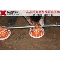 江苏肉鸡料线 养鸡料线 自动喂料机 平养设备 兴达牧机品质