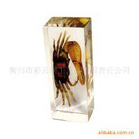 批发昆虫标本水晶琥珀纸镇、书镇 包埋真实昆虫 适合旅游纪念品