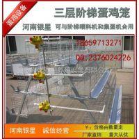 供应青海省三层阶梯蛋鸡笼价格 蛋鸡笼 育雏笼价格