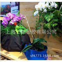 定做室内毛毡壁挂绿化袋,毛毡壁挂植物美植袋,尺寸定做