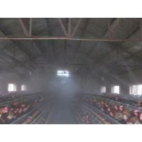 养鸡场鸡舍杀菌用什么消毒设备