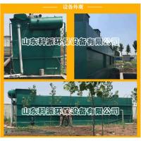 四川绵阳养猪场一体化污水处理设备 山东科派环保设备(厂家供应)