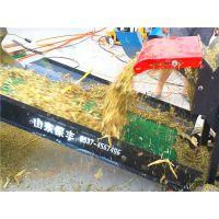 玉米秸秆铡草揉搓机 山东保丰机械 大型铡草粉碎揉搓机