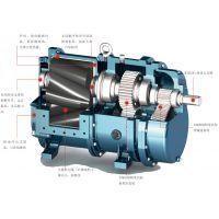 厂家直销罗德RDC50凸轮转子泵,含油污水处理专业耐腐蚀设备