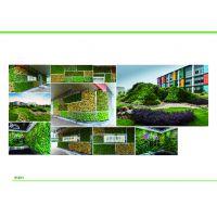 植物墙、垂直绿化、室内外植物批发零售、屋顶花园、种植大棚