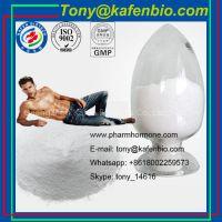 Sports Nutrition Bodybuilding Powder Branch Chain Amino Acid Bcaa