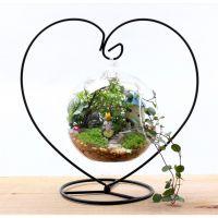 新款平底苔藓微景观瓶/玻璃储物罐/糖果花茶罐/密封罐