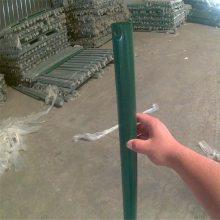 旺来6*6荷兰网现货 养殖铁丝网 围栏网图片