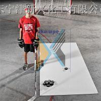 新兴厂家供应初学人员练习冰球进球的冰球练习板
