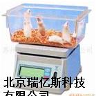 RST671实验动物称量用电子秤生产哪里购买