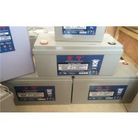宁波北宁蓄电池DFS12-38参数