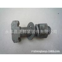 质量保证,16*80玻璃幕墙螺栓,高强度哈芬槽螺栓,16*80热镀锌