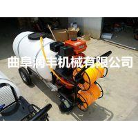 移动方便高压喷雾器 润丰 户外植物养护喷雾器