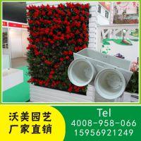厂家承接植物墙绿化工程服务 立体植物墙体绿化PP原料花盆批发