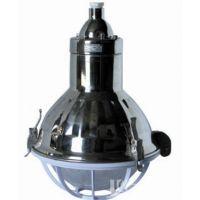 武汉厂家批发直销FGL-G(NFC9180-G)防水防尘不锈钢灯