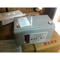 包头美国索润森蓄电池SAL12-100代理商