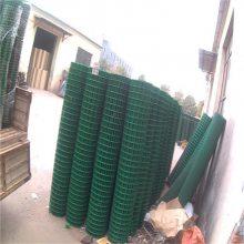 安平涂塑电焊网 细铁丝网 电焊网批发