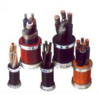 供应齐鲁牌聚乙烯绝缘聚氯乙烯护套控制屏蔽耐火交联电缆N-KYJVyP1
