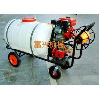 自走式手推式喷雾器 小型汽油打药机 富兴自走式果园喷雾器