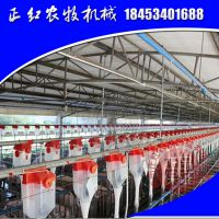zh-183正红农牧自动喂猪自动化饲喂系统养猪料线正红厂家