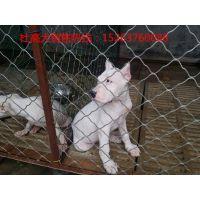 哪里有杜高犬养殖基地,二三个月纯种杜高幼犬多少钱一只